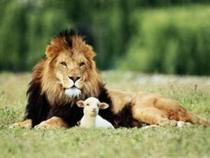 God's kingdom restoration startswith….